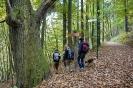Bildrechte: Saarpfalz-Touristik/Wolfgang Henn